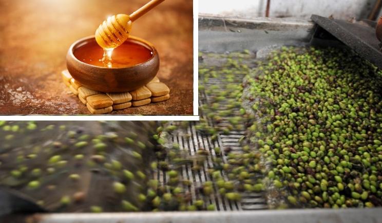 Αποτέλεσμα εικόνας για Δεκατρία προϊόντα σε διαδικασία πιστοποίησης από την Περιφέρεια